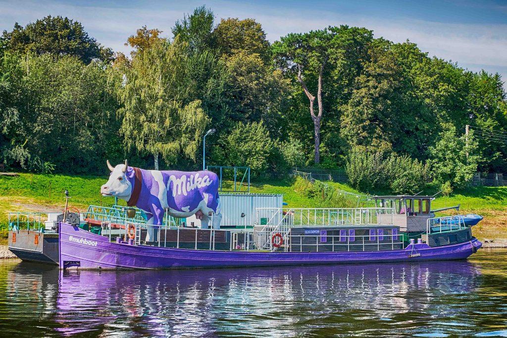 Das Muhboot